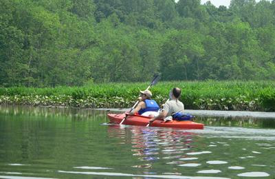 Tandem Kayak - Mindie Burgoyne