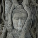 ayutthaya-temples-16
