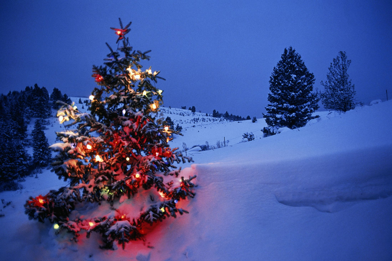 Snowfall on christmas day