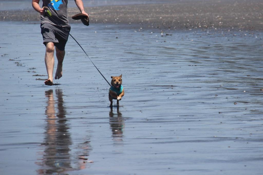 washington-coast-kalaloch-beach-13