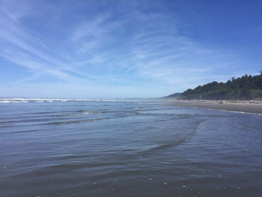 washington-coast-kalaloch-beach-5
