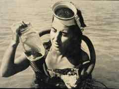 Amazing Women: Eugenie Clark, the Shark Lady