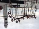 Murano glass bird sculpture