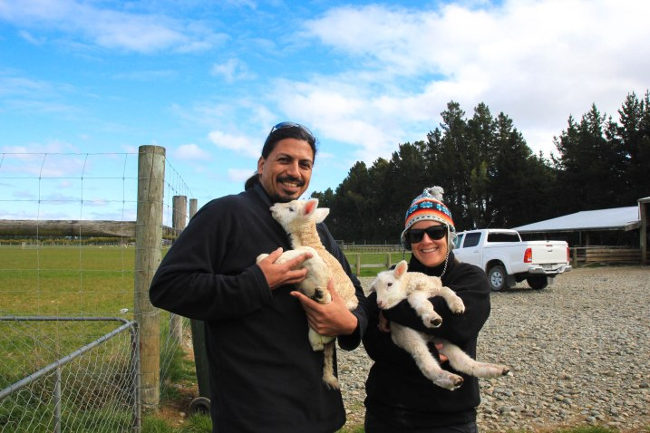 New Zealand Farm Tour