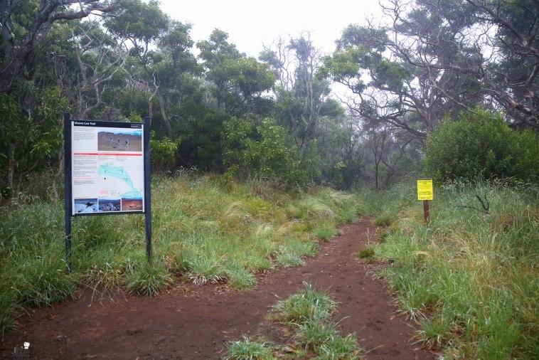 Mauna Loa Hike-11