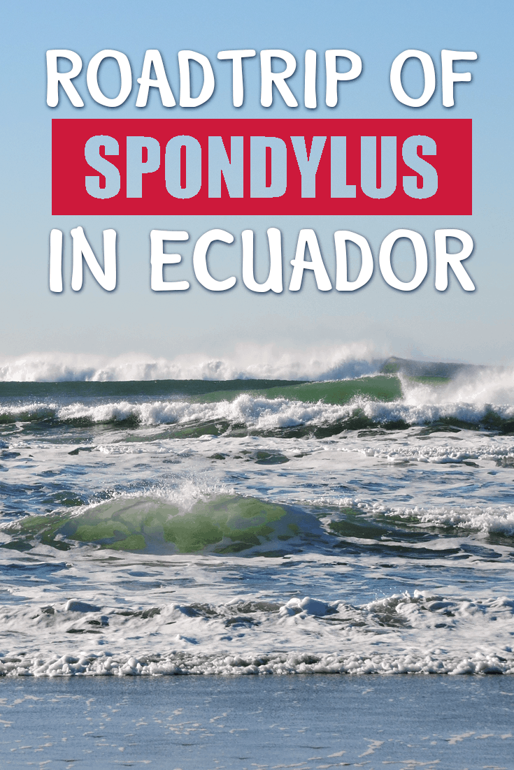 roadtrip-of-spondylus-in-ecuador