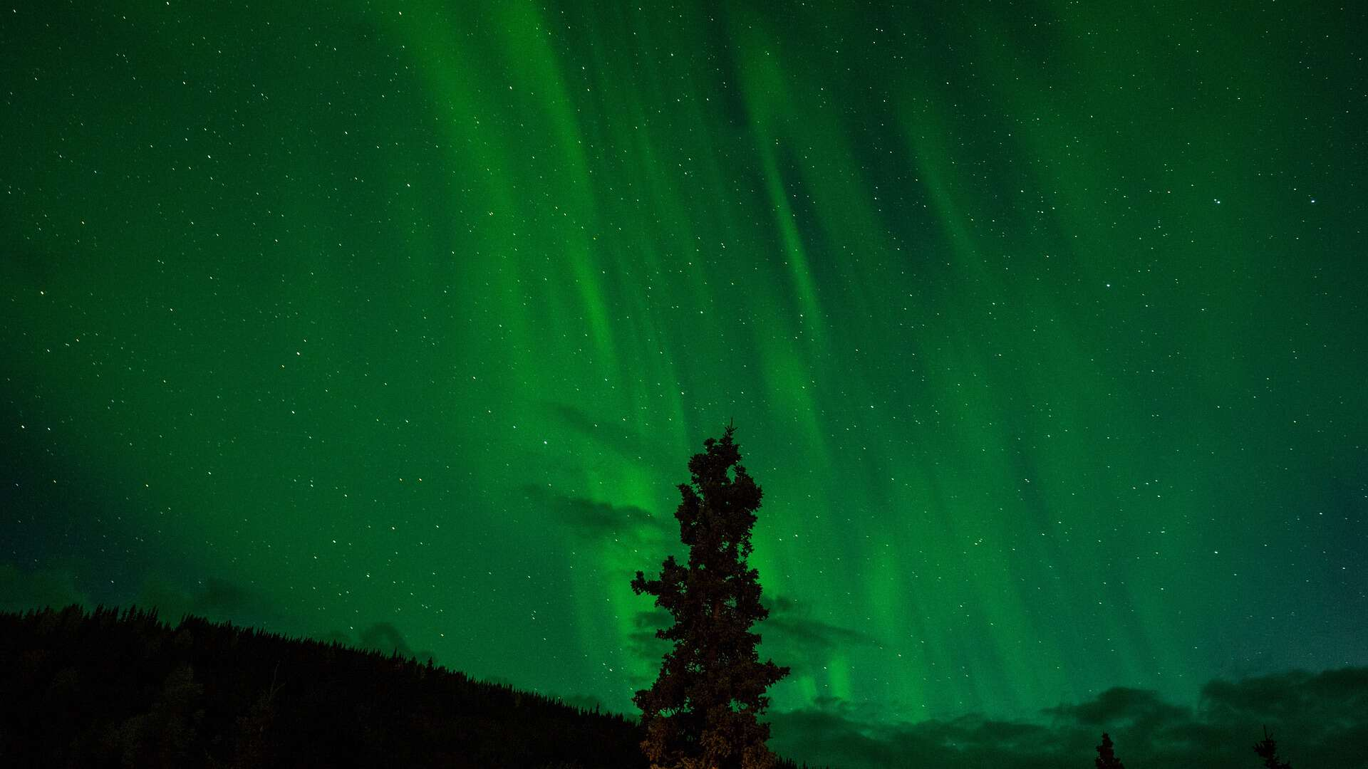 northern-lights-1149130_1920