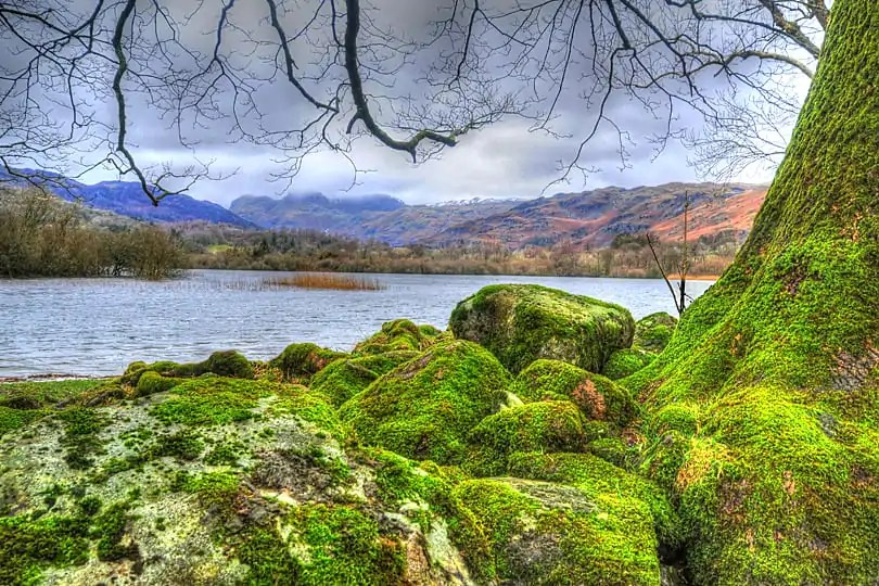 35 Photographs that will make you want to visit the Lake District in the rain