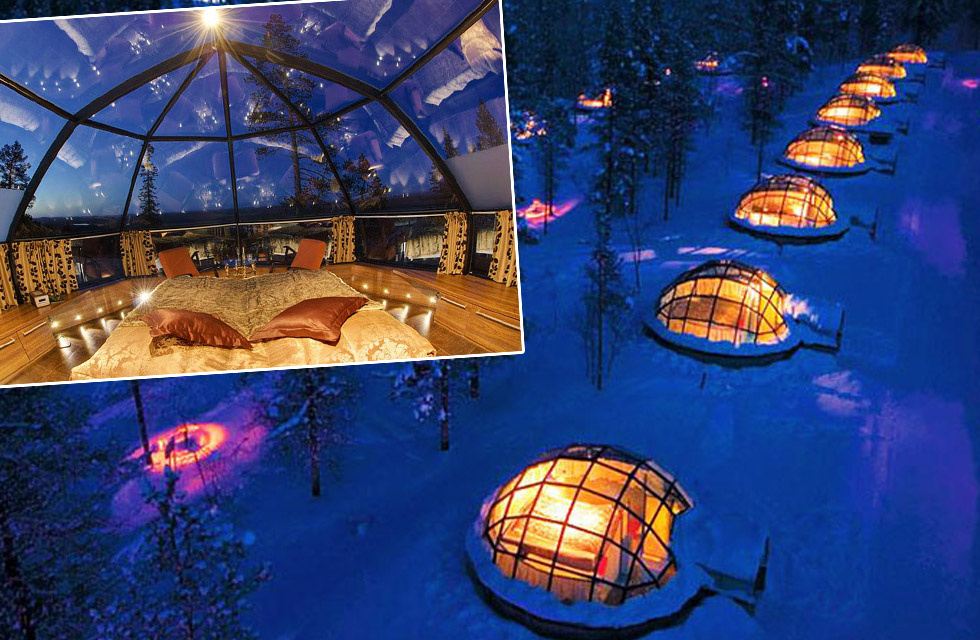 northern lights job to observe from glass igloo finland application. Black Bedroom Furniture Sets. Home Design Ideas