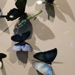 Blue-Butterfly-Art-Norwegian-Getaway-TravelXena-3