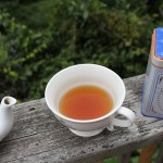 Harney-and-Sons-tea-on-deck-Travel-Xena-13