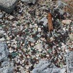 Bermuda_Sea_Glass_Beach_Travel_Xena_015