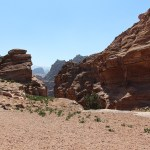 Petra_Jordan_Middle_East_TravelXena_108