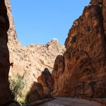 Petra_Jordan_Middle_East_TravelXena_229