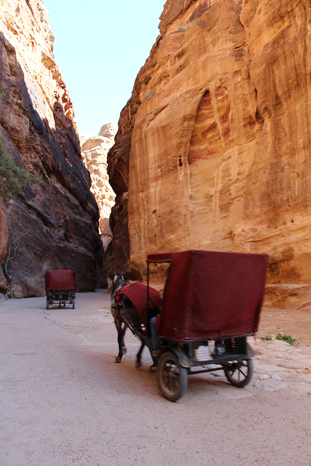 Petra_Jordan_Middle_East_TravelXena_246