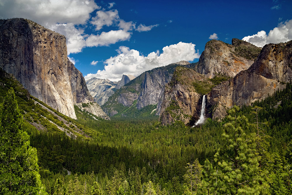 Valley Tours Guided Bus & Tram Tours | Yosemite National Park Ca
