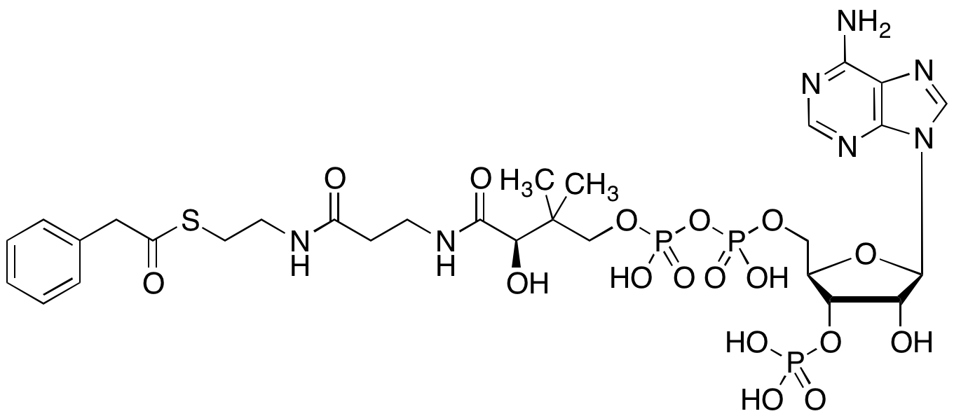 Synonym Innovativ Trc Details Of Cas 7532 39 Chemicalname Phenylacetyl Coa