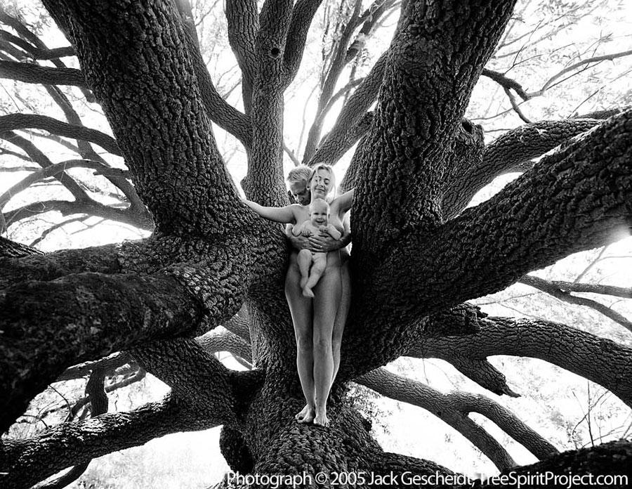 Family Tree TreeSpirit Project