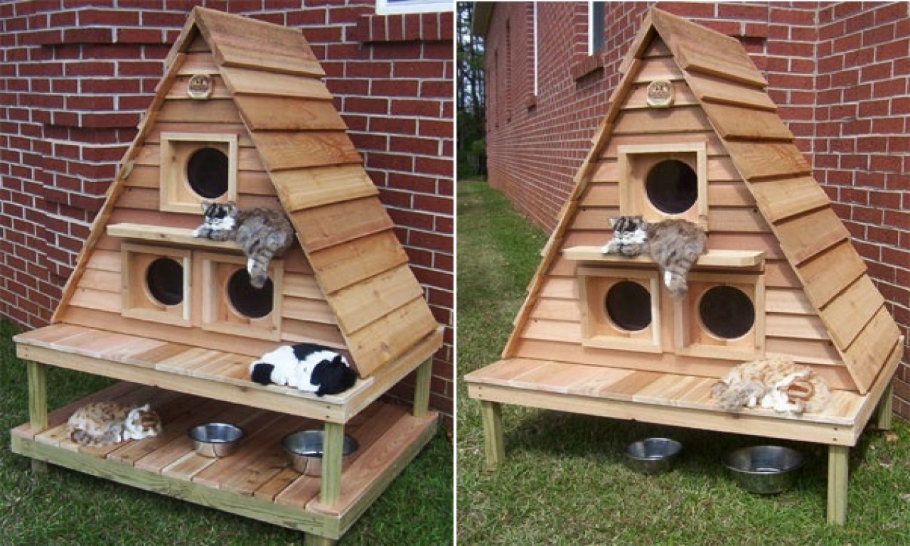Cat House Plans Insulated Outdoor Cat Houses Multiple Outdoor Cat House
