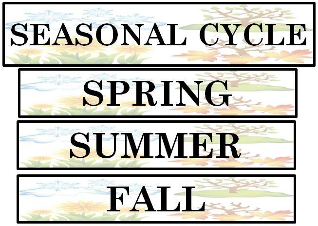 Active Anchor Chart Seasonal Cycle - TreeTopSecret Education - anchor charts