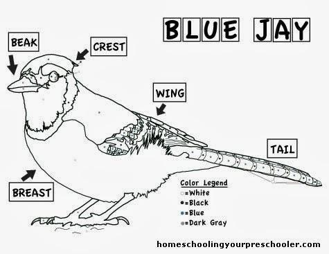 blue diagram