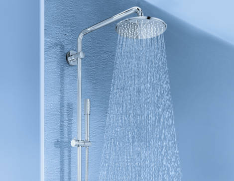 Bacteria and fungi present in the shower heads of your bathroom