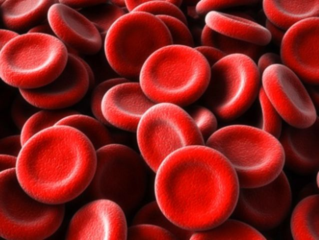 A blood cell takes 60 seconds to complete a circuit of the body