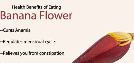 The health benefits of banana flower can prevent several disease and much