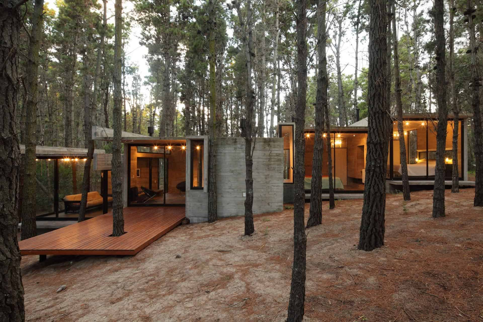 Houses In The Forest Concrete And Glass Summer House Modern House Designs