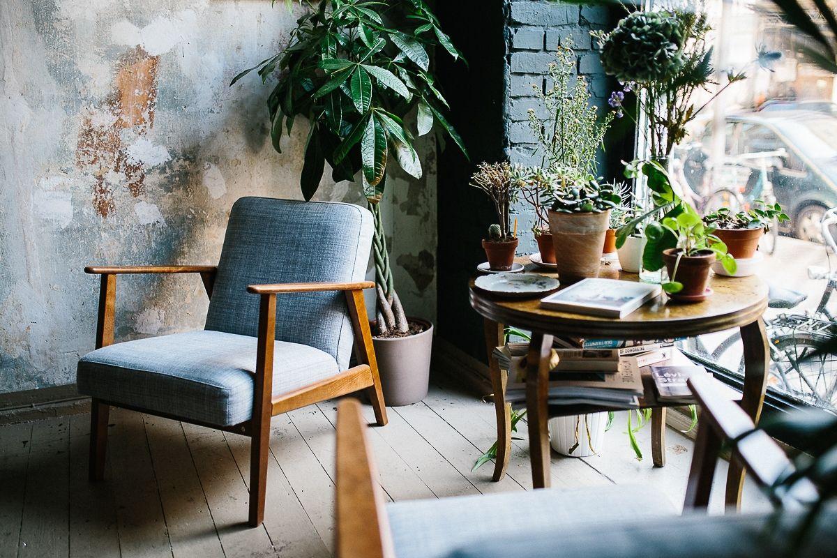 Grünpflanzen Schlafzimmer | Zimmerpflanze Bilder Ideen Couch
