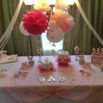 spring butterfly baby shower  (137)
