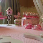 spring butterfly baby shower  (31)