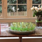spring butterfly baby shower  (96)