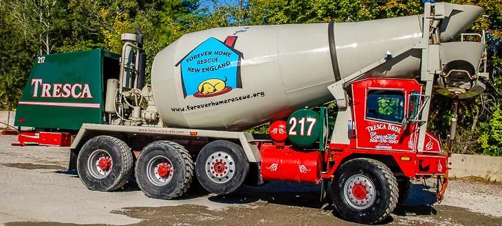 forever-home-rescue-concrete-truck-tresca-brothers-2