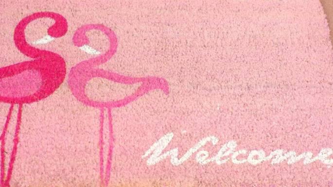 flamingo19