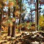 Fall Foliage Day at Camps Kirchenwald and Nawakwa