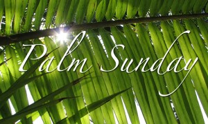 "This Sunday at Trinity:  Palm Sunday ""The Power of the Cross"""