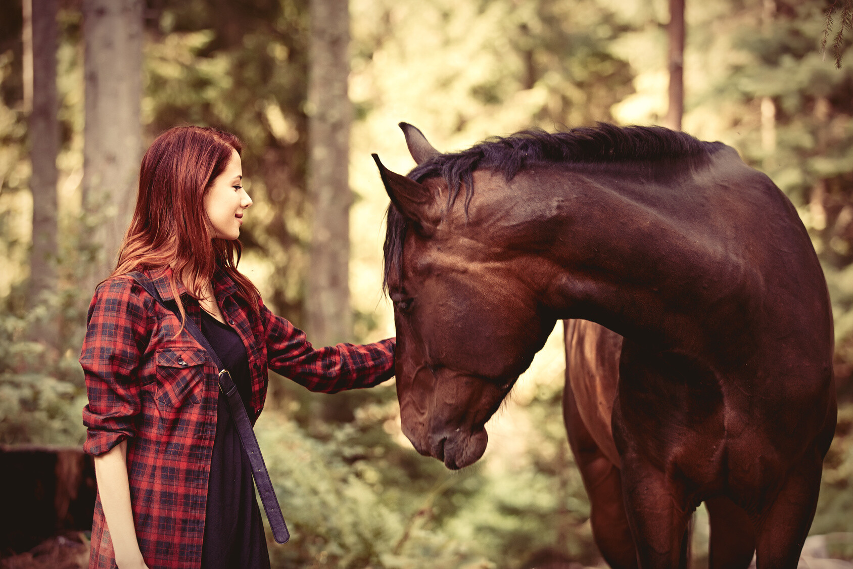 Gf Bf Wallpaper With Quotes How Working With Horses Helps Emotional Development