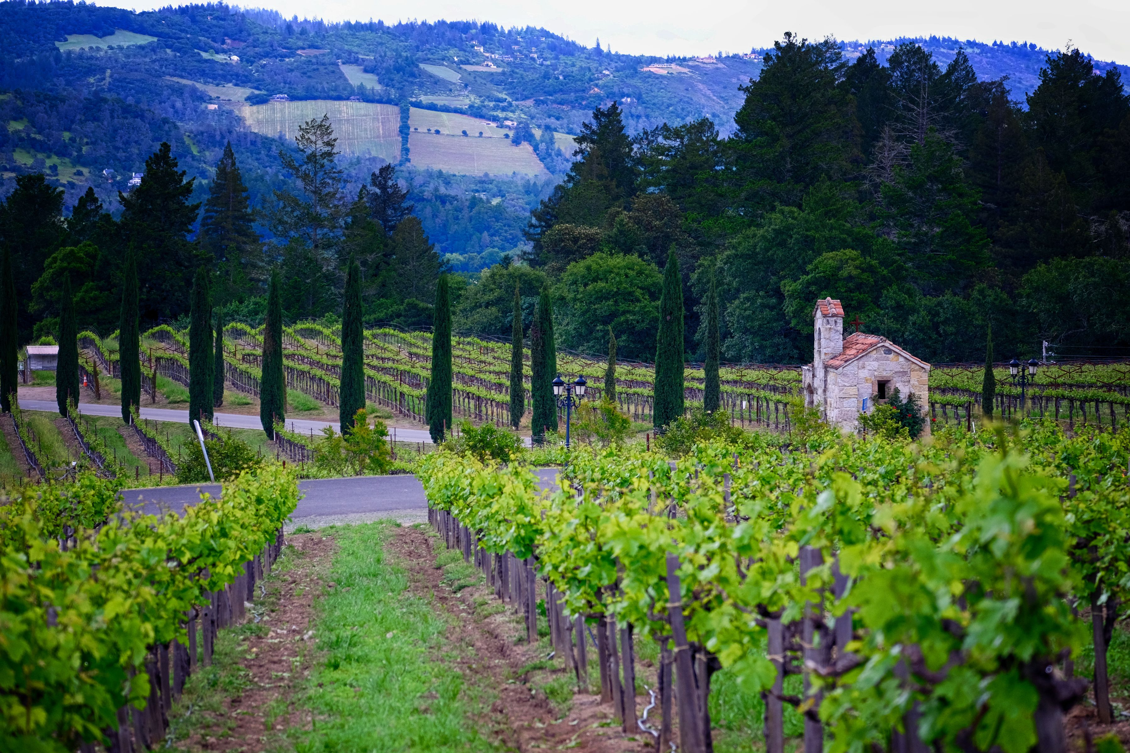 Valley Tours The 9 Best Napa Valley Tours Of 2020