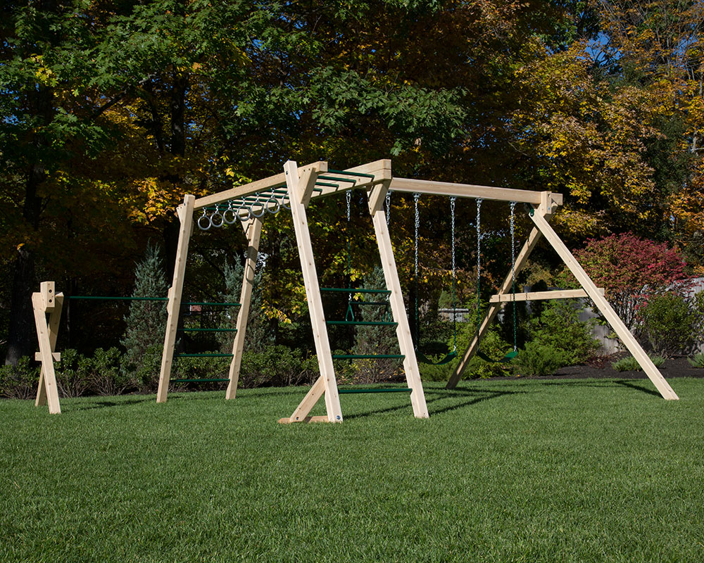 Monkey Bar Swing Gym Plus