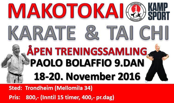 Samling med Paolo Bolaffio 9.dan 18-20.Nov 2016
