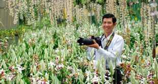 Anh Sỹ trong vườn lan đang nở rộ dịp Tết Nguyên đán 2016. Ảnh: Q.H