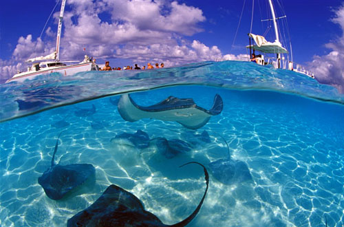 Cayman-Islands-Travel3