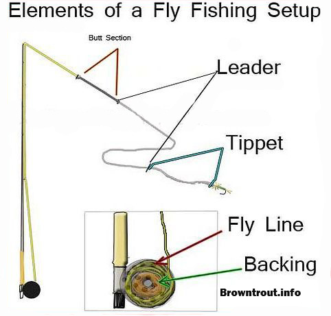 Fly Fishing Basics (Line, leader, backing and tippet rigging) - line leader