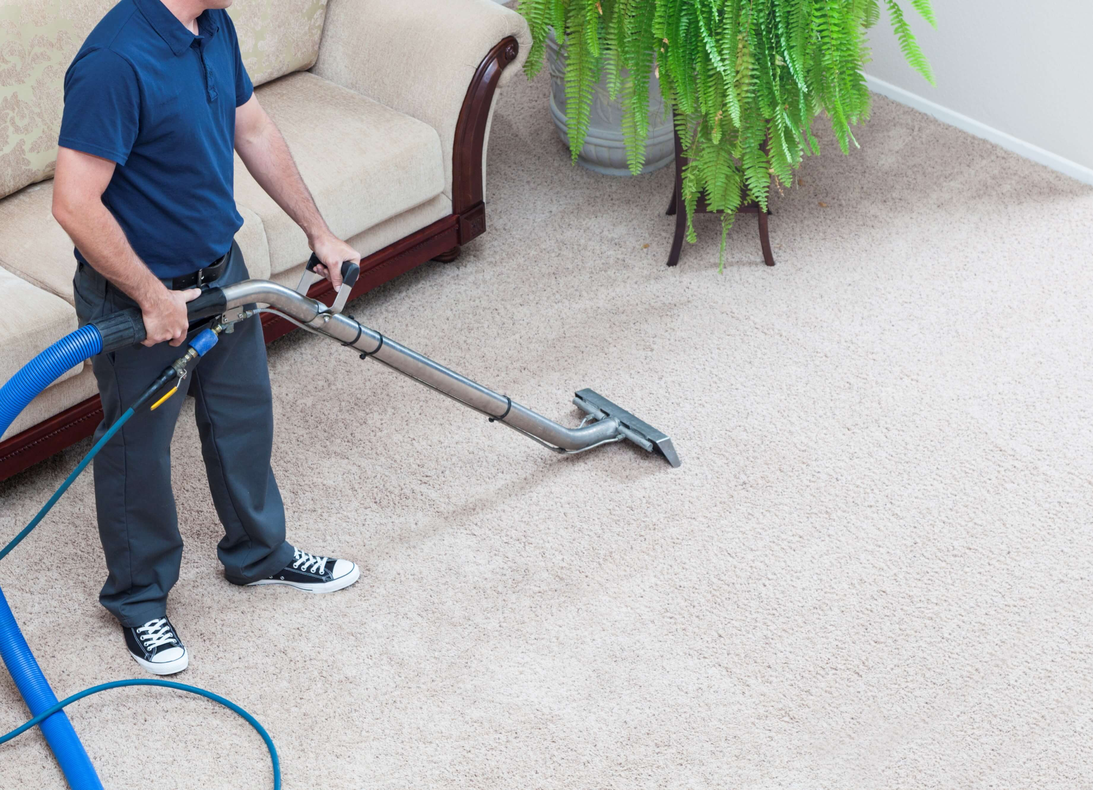 Carpet Cleaning True Carpet Cleaning The Woodlands Tx North Houston Tx