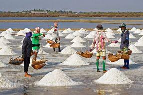 Farmers Harversting Sea Salt Jeffrey Dach MD