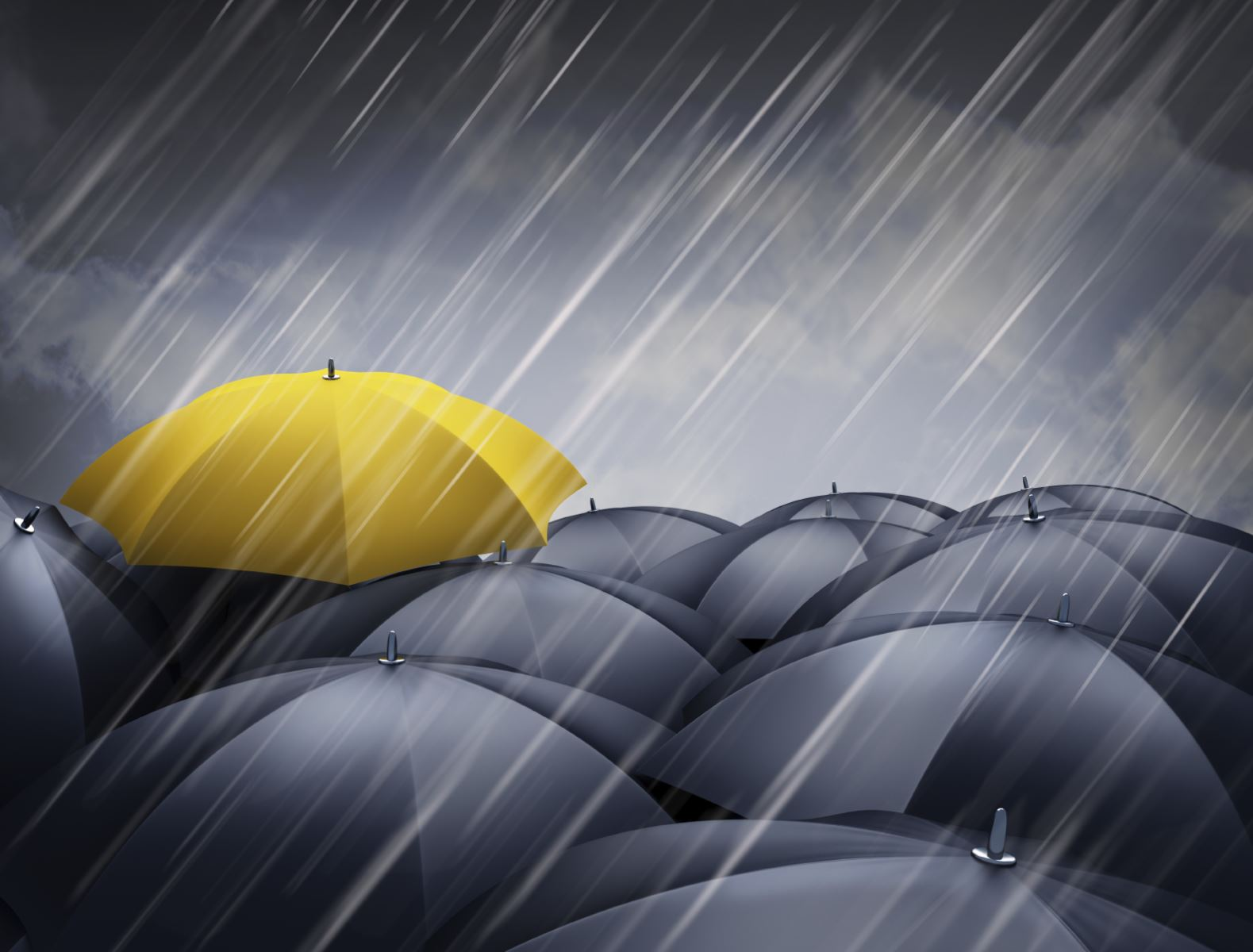 The Yellow Wallpaper Important Quotes Truenorth Companies Truenorth Provides Sound Business