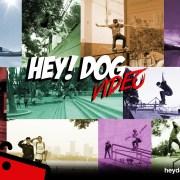 HEY! DOG VIDEO