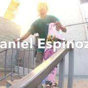 Andale Bearings Commerical