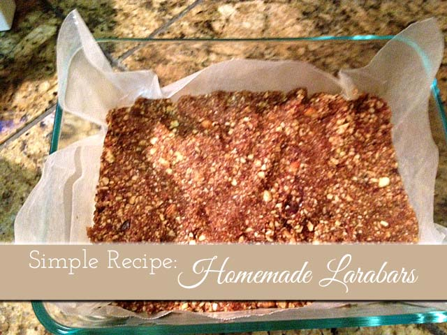 Homemade_Larabar_Recipe